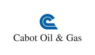 Стоимость акций Cabot Oil Gas сегодня: онлайн-график COG + аналитика и прогноз