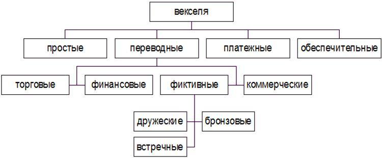 Разновидности векселей